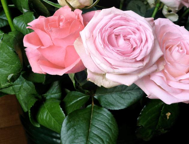 La marchande de fleurs rue tres cloitres lesmondaines - La marchande de couleur ...