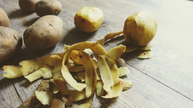 Pommes de terre pour le gratin dauphinois des Mondaines