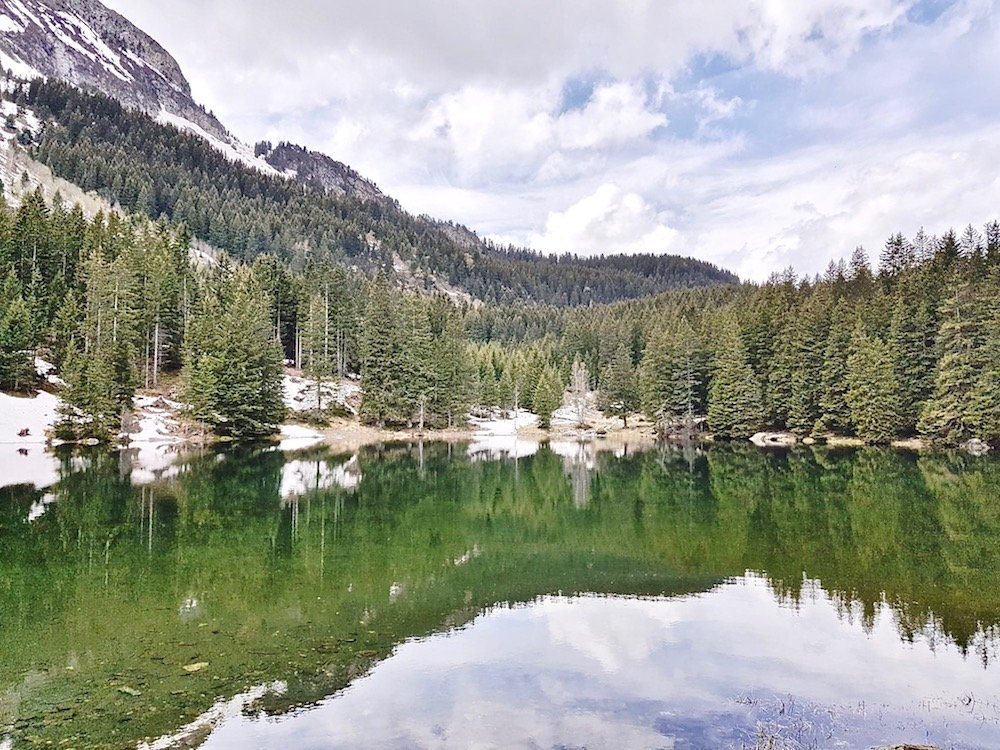 lac isere sapin