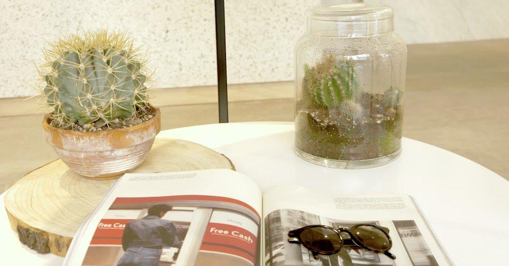 cactusok