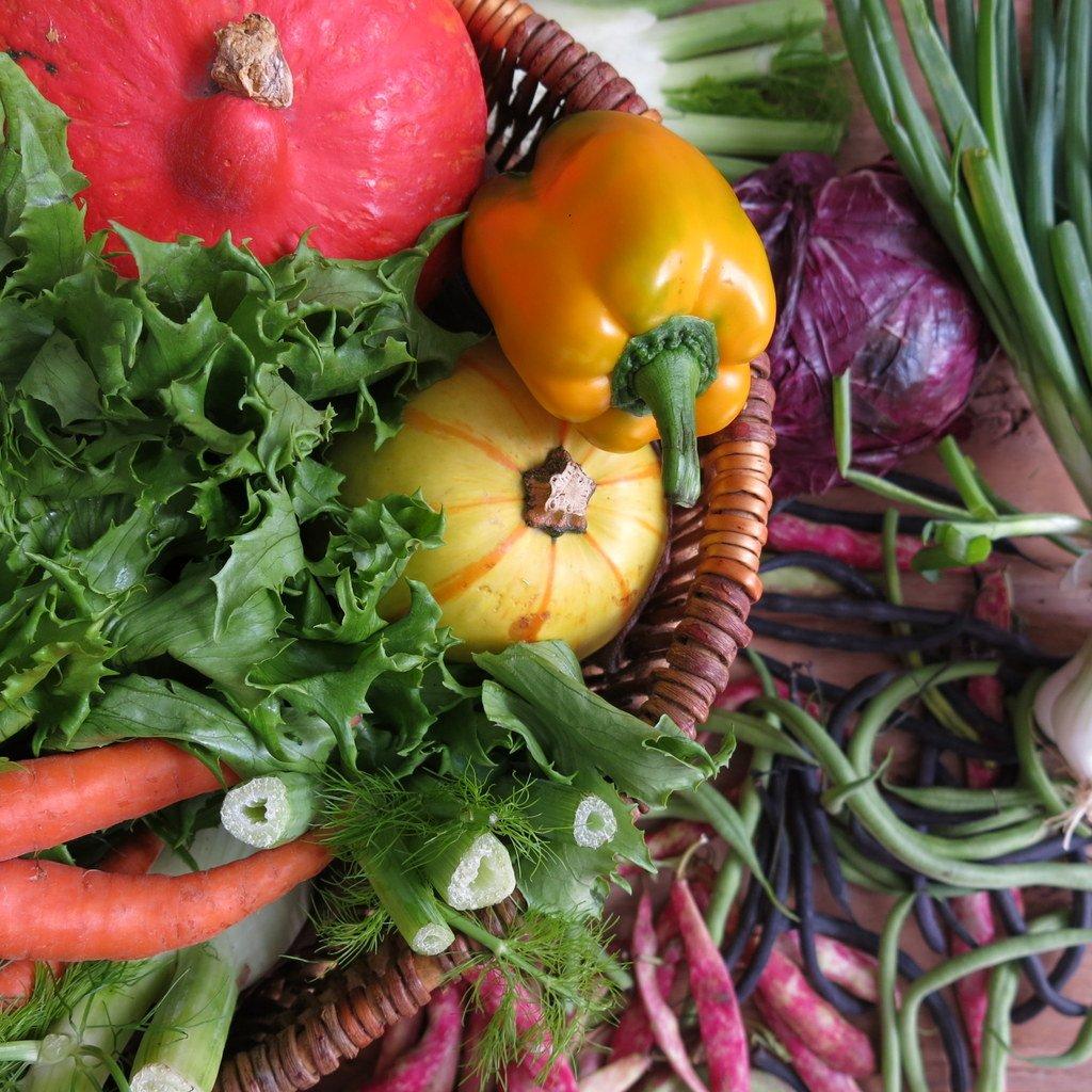 panier de légumes d'été à Grenoble