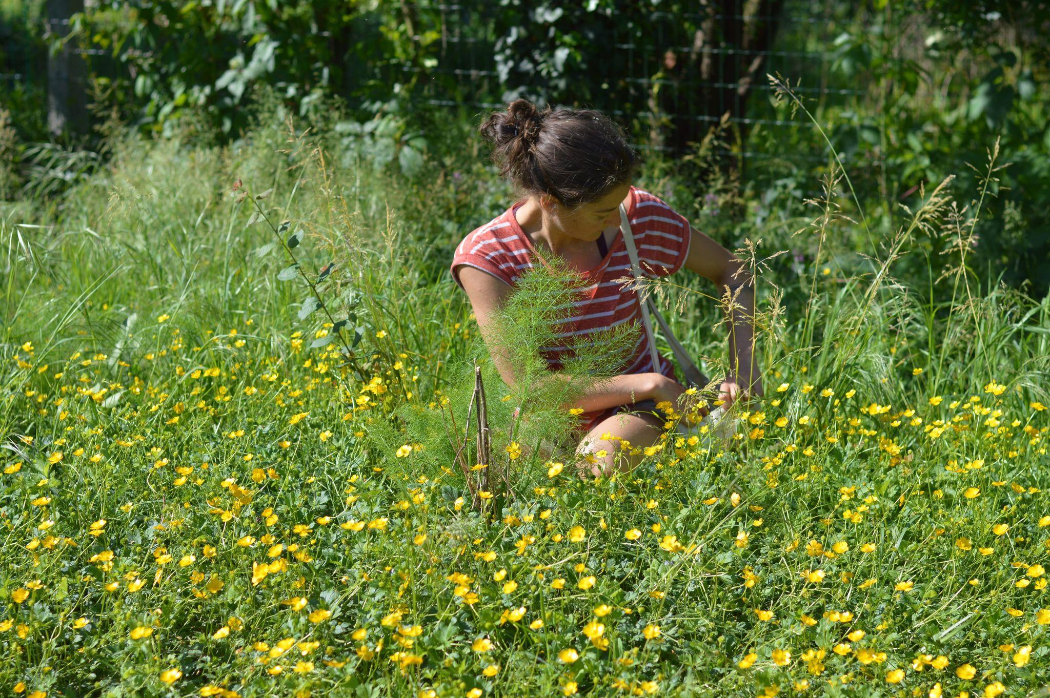 Johanna Jalbert naturopathe Grenoble
