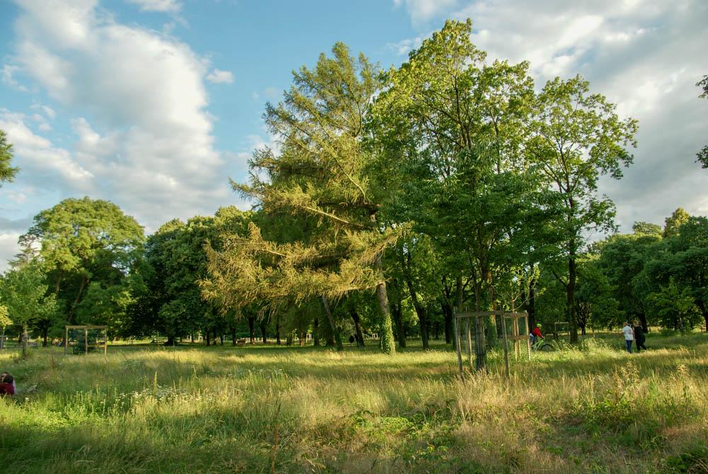 Sortie cueillette Parc Bachelard