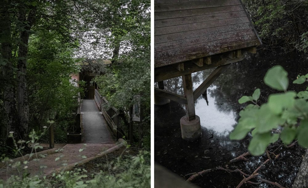 étang de lemps